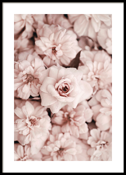 Bed Of Flowers Poster in the group Prints / Sizes / 50x70cm | 20x28 at Desenio AB (2786)