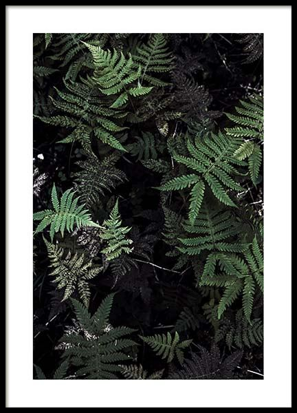 Forest treasure Poster in the group Prints / Sizes / 50x70cm | 20x28 at Desenio AB (2827)