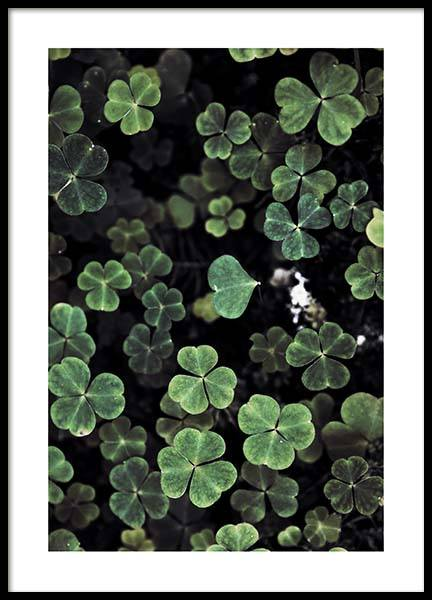 Forest Clover Poster in the group Prints / Photographs at Desenio AB (2829)
