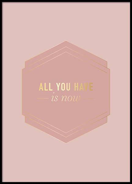 All You Have Pink Poster in the group Prints / Typography & quotes at Desenio AB (2852)