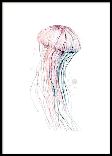 Aquarelle Jellyfish Poster in the group Prints / Illustrations at Desenio AB (2905)
