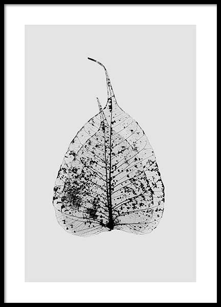 Leaf Skeleton Poster in the group Prints / Floral at Desenio AB (2927)