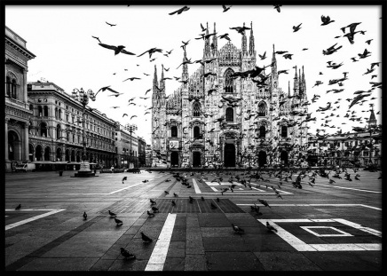 Duomo Di Milano Poster in the group Prints / Photographs at Desenio AB (2994)