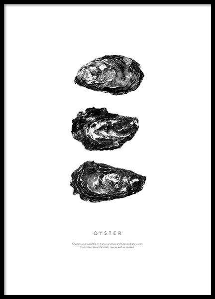 Oyster three Poster in the group Prints / Sizes / 50x70cm | 20x28 at Desenio AB (3165)