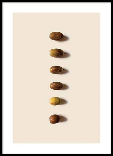 Acorn Composition 2 Poster in the group Prints / Photographs at Desenio AB (3252)