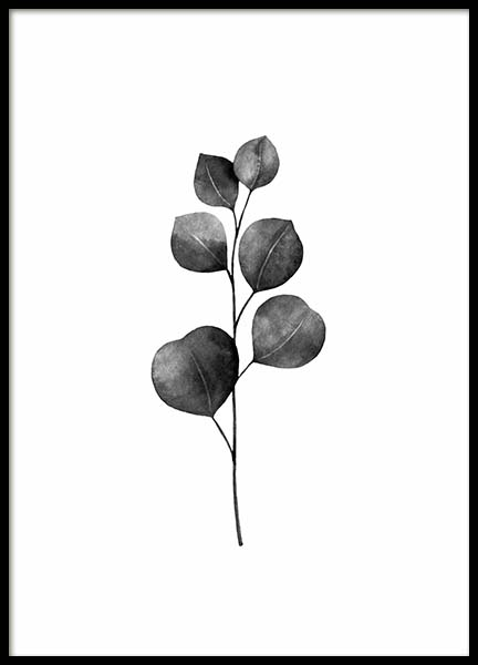 Eucalyptus B&W Poster in the group Prints / Floral at Desenio AB (3271)