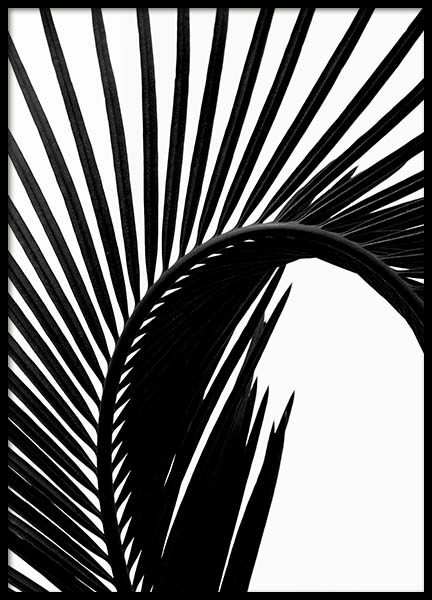 Black Palm Leaf Two Poster in the group Prints / Floral at Desenio AB (3278)