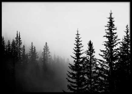 Foggy Tree Tops Poster in the group Prints / Black & white at Desenio AB (3303)