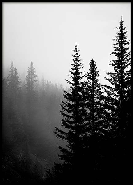 Tree Tops B&W Poster in the group Prints / Black & white at Desenio AB (3304)