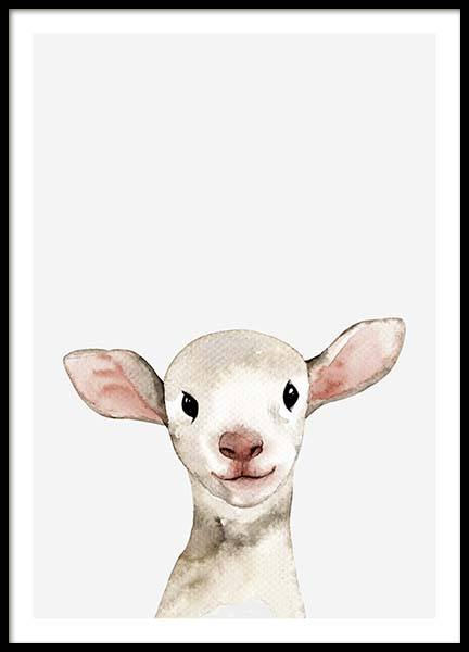 Little Lamb Poster in the group Prints / Animals at Desenio AB (3365)