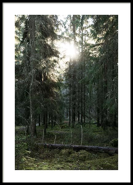 Dalarna Poster in the group Prints / Photographs at Desenio AB (3497)