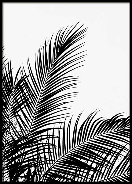 Black Palm Tree Two Poster in the group Prints / Black & white at Desenio AB (3524)