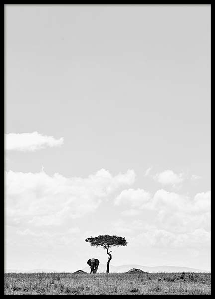 Elephant Under Tree Poster in the group Prints / Black & white at Desenio AB (3540)