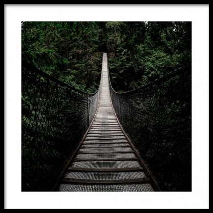Bridge In Forest Poster in the group Prints / Nature at Desenio AB (3564)