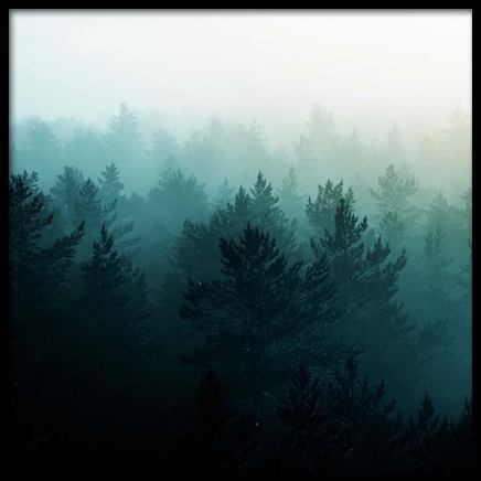 View Of Misty Forest Poster in the group Prints / Nature prints at Desenio AB (3567)