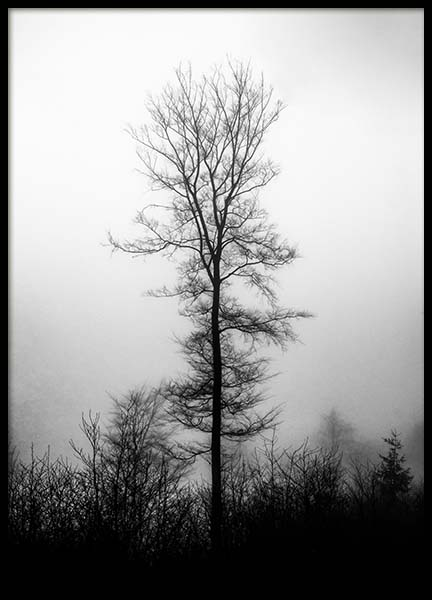 Black Tree Poster in the group Prints / Sizes / 50x70cm | 20x28 at Desenio AB (3581)