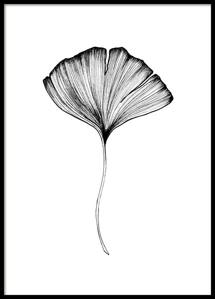 Ginko Leaf Poster in the group Prints / Floral at Desenio AB (3599)