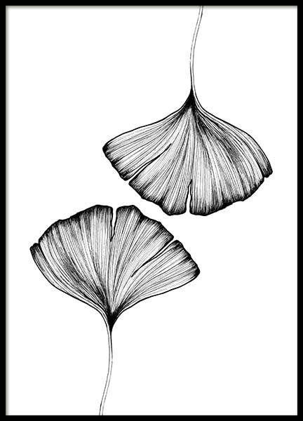 Ginko Leaves Poster in the group Prints / Sizes / 50x70cm | 20x28 at Desenio AB (3600)