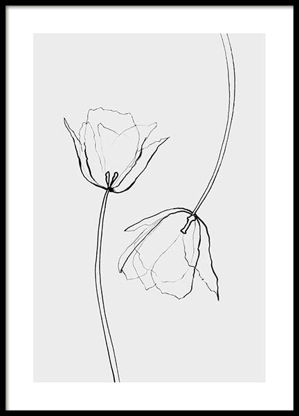 Line Tulips Poster in the group Prints / Sizes / 50x70cm | 20x28 at Desenio AB (3601)