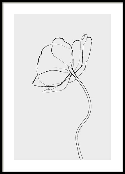 Line Poppy Poster in the group Prints / Floral at Desenio AB (3602)