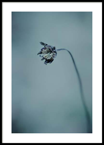 Waiting for spring Poster in the group Prints / Sizes / 50x70cm | 20x28 at Desenio AB (3646)