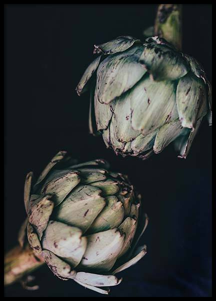 Artichokes Poster in the group Prints / Kitchen at Desenio AB (3677)