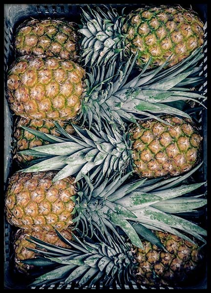 Pineapples Poster in the group Prints / Sizes / 50x70cm | 20x28 at Desenio AB (3679)