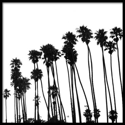 Venice Beach Palm Trees No1 Poster in the group Prints / Black & white at Desenio AB (3776)