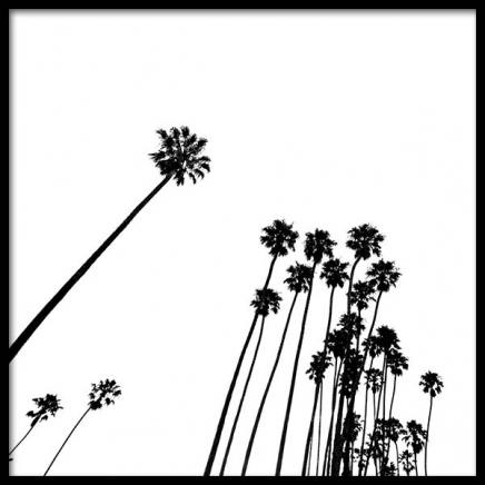 Venice Beach Palm Trees No2 Poster in the group Prints / Nature at Desenio AB (3777)