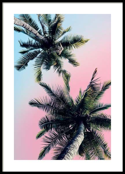 Pastel Palm Sky Poster in the group Prints / Photographs at Desenio AB (3783)