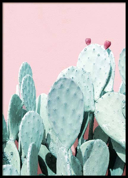 Pastel Cactus No3 Poster in the group Prints / Photographs at Desenio AB (3792)