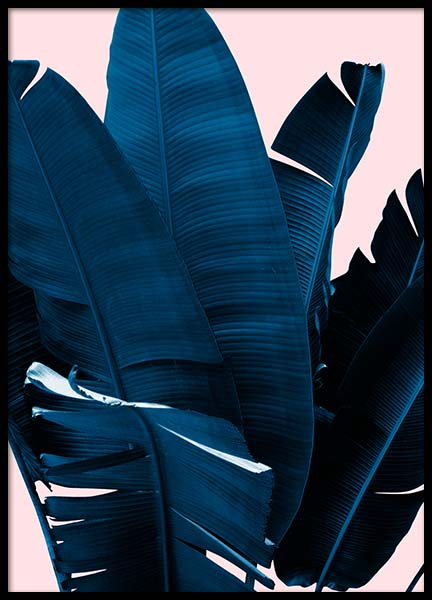Blue Leaves On Pink No3 Poster in the group Prints / Floral at Desenio AB (3796)