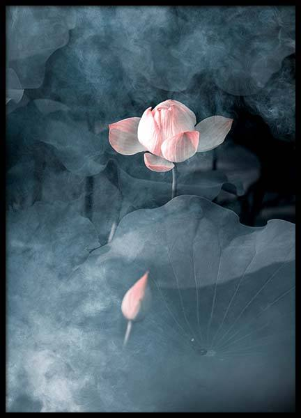 Foggy flower No3 Poster in the group Prints / Sizes / 50x70cm | 20x28 at Desenio AB (3836)