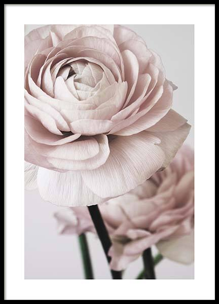 Pink Flower Dream No2 Poster in the group Prints / Floral at Desenio AB (3926)