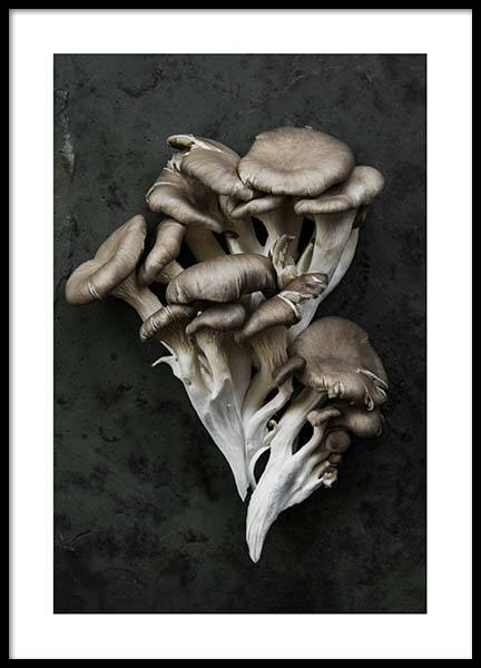 Mushrooms Poster in the group Prints / Kitchen at Desenio AB (3933)