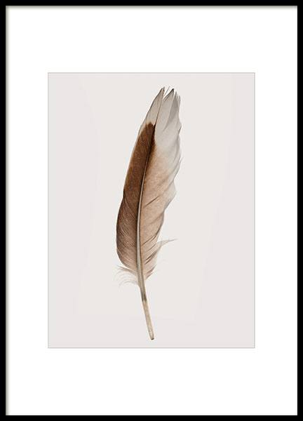 Prints with photographs of feather online from Desenio