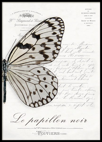 Prints for shabby chic style, butterflies on a poster for a French interior desi