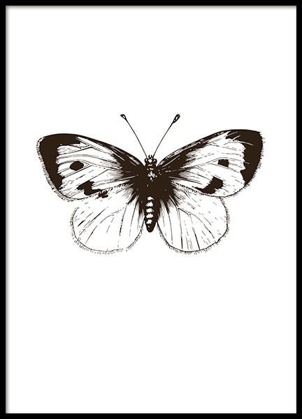 black and white poster with an illustration of a butterfly. Black Bedroom Furniture Sets. Home Design Ideas