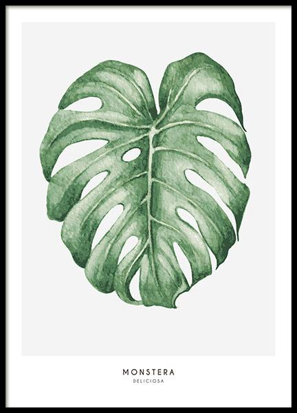 Botanical print with plant patterns. Cheap prints with plants.