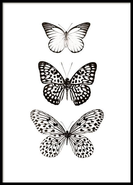 Black and white prints with butterflies and insects