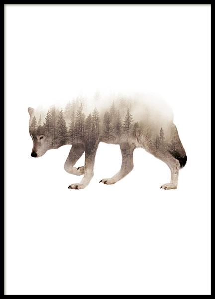 Poster of wolf and forest. Nice print for Nordic interior design. Nature photogr