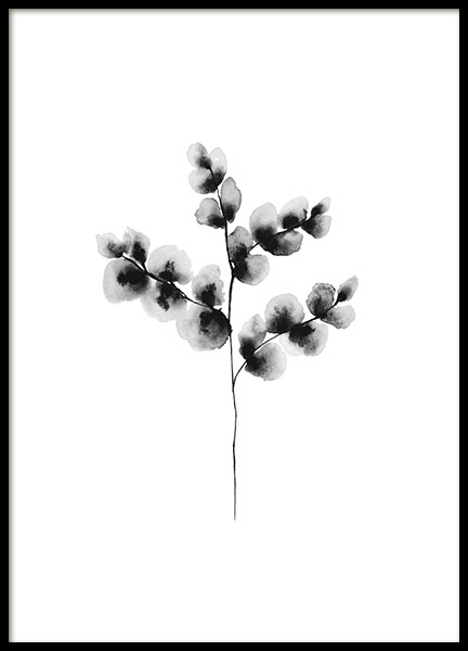 Black and white prints and posters with flowers in water-colour online