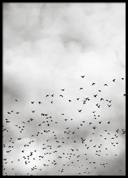 Print with photograph of the sky, webshop posters