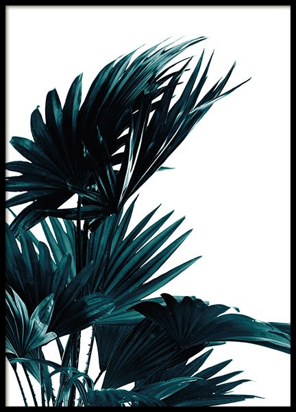 Palm Leaves (30x40cm) in the group Prints / Floral at Desenio AB (8318-5)