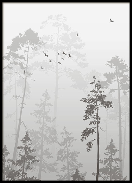 Foggy Forest, Poster in the group Prints / Black & white at Desenio AB (8352)