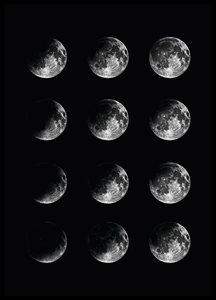 Moon Phase, poster in the group Prints / Sizes / 30x40cm | 12x16