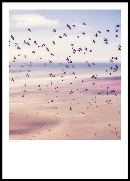 Cotton Candy Sky, Poster in the group Prints / Nature at Desenio AB (8397)
