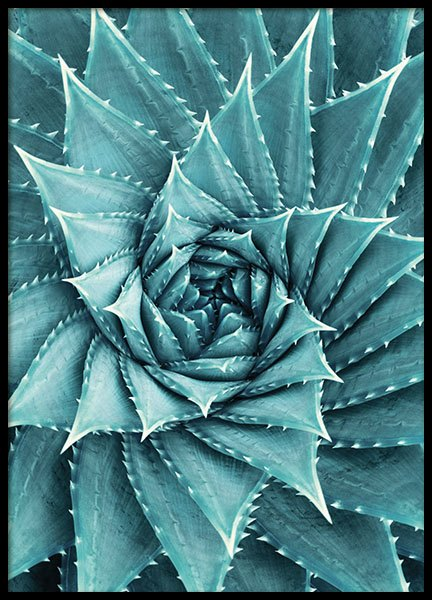 Aloe, Poster in the group Prints / Floral at Desenio AB (8480)