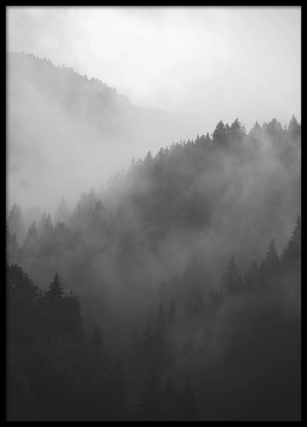 Black Forest, posters in the group Prints / Sizes / 70x100cm | 28x39