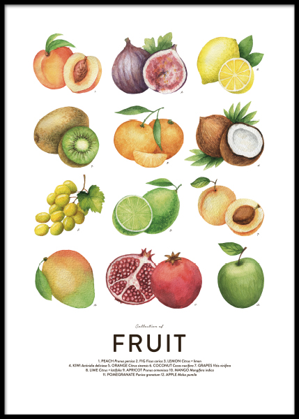Fruit, Posters in the group Prints / Kitchen at Desenio AB (8590)